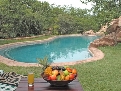 Mopane Bush Lodge pool (hi-res image)